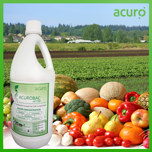ACUROBAC AG100 :- Beneficial Bacterial solution
