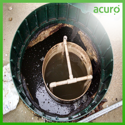 MICROBIAL CULTURE FOR SEPTIC TANK / BIOTOILET